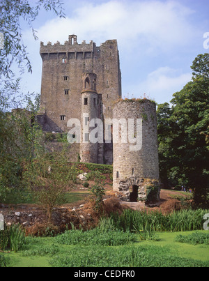 Castle keep and tower, Blarney Castle, Blarney, County Cork, Republic of Ireland - Stock Photo