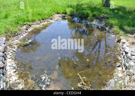 stagnant rain water - Stock Photo