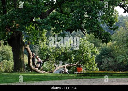 Bad Muskau, Landschaftspark (Park Muzakowski), Spielende Kinder im Park - Stock Photo