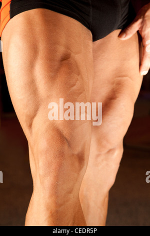 closeup photo of bodybuilder legs - Stock Photo