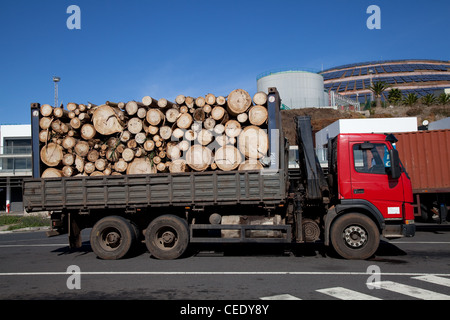 Loading harvested plantation Norway spruce timber on to truck at Stock Photo, Royalty ...