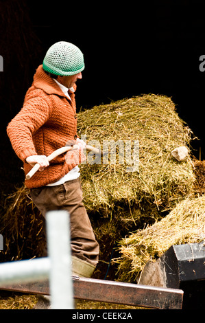 Farmer at Arros de Cardos. Val de Cardos. Pallars Sobirá. Lleida. Spain - Stock Photo
