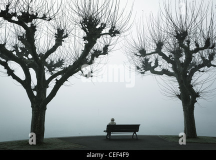 Lone person sits on a bench,Lake Constance,Konstanz,Bodensee,Badden-Wurtemberg,Germany - Stock Photo