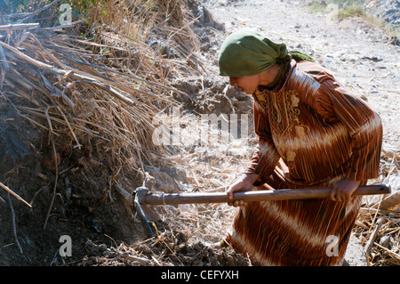 Young woman working in the countryside Minya Egypt - Stock Photo