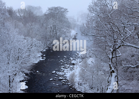 Snow covers the trees along the River Wharfe as seen from Strid Wood, Barden, Wharfedale, Yorkshire - Stock Photo