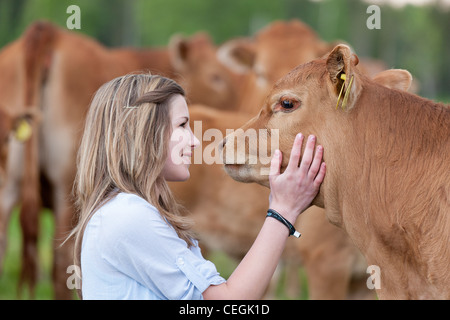 Girl stroking calf - Stock Photo