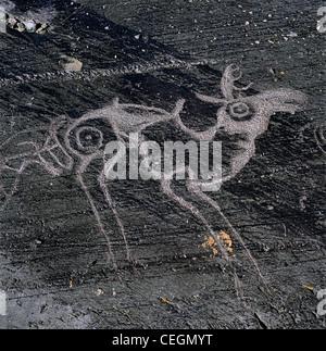 Elk. Petroglyphs. Altai Tavan Bogd National Park. Mongolia - Stock Photo