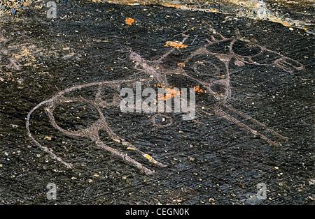 Rider. Petroglyphs. Altai Tavan Bogd National Park. Mongolia - Stock Photo