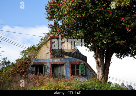Palheiro houses_ Old overgrown village garden, building, architecture, landscape.  Traditional A-framed houses of - Stock Photo