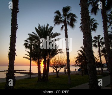 CY - PAPHOS: The Promenade at Paphos (Pafos) Harbour - Stock Photo