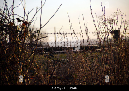 Barbed wire fence and pole in the english countryside - Stock Photo