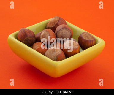 Group of hazelnuts in a bowl. - Stock Photo