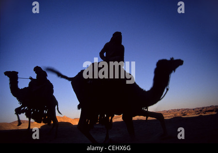 Arabs on camels in the desert. Silhouettes against the sky. - Stock Photo