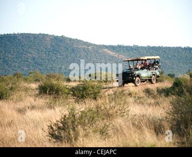 Game drive at Madikwe Private Game Reserve,Mpumalanga - Stock Photo