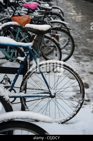 Bicycles parked in the snow in Cambridge England UK - Stock Photo