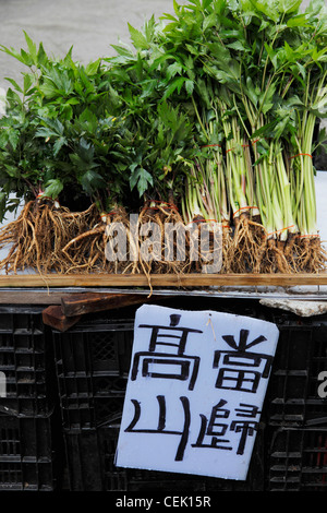 Vegetables for sale in market with sign written in Chinese - Stock Photo
