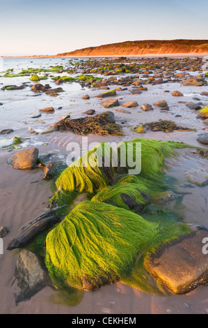 The Sands of Mussetter at sunset, on the island of Eday, Orkney Islands, Scotland. - Stock Photo