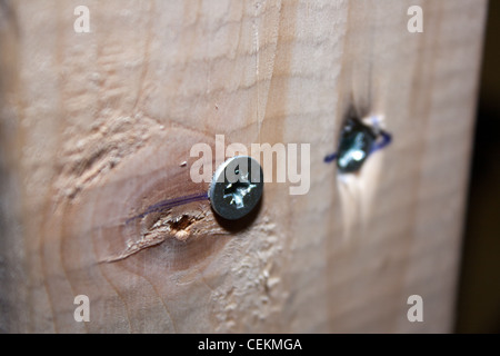 Cross recess type pan head screws in wood and being used by a builder in a house for DIY home improvements - Stock Photo