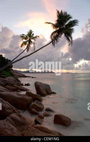 Anse Sévère, La Digue, Seychelles. View along rocky coastline to the island of Praslin, dusk, overhanging palm-trees - Stock Photo