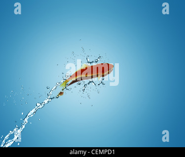 Golden fish jumping out of water, Good Concept for bad luck, unlucky, risks concept. - Stock Photo