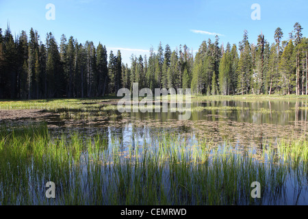 A lake near the Tioga Road in Yosemite NP California USA - Stock Photo