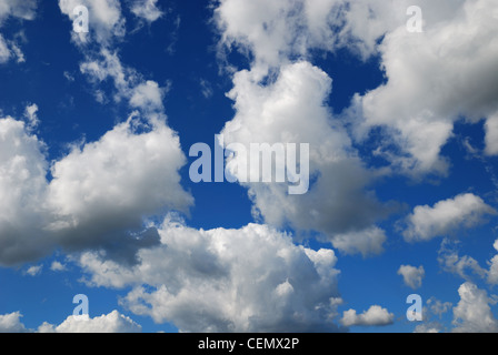 Clouds on the sky in summer. - Stock Photo