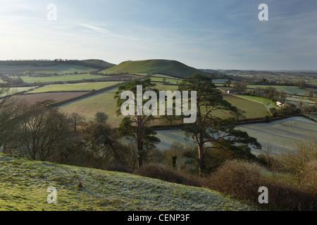 View from Cadbury Castle towards Parrock Hill. Somerset. England. UK. - Stock Photo