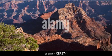 Evening light on Vishnu Temple, view south from Cape Royal, North Rim, Grand Canyon National Park, Arizona, USA - Stock Photo