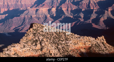 Evening light on Freya Castle and surrounding formations, from Cape Royal, North Rim, Grand Canyon National Park, - Stock Photo