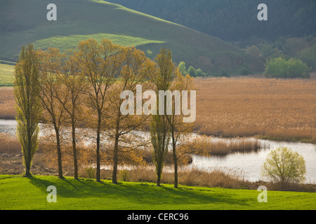Marsh of Colfiorito, a natural wetland on a Karst Plain in the Central Apennines, east of Foligno, Umbria, Italy - Stock Photo