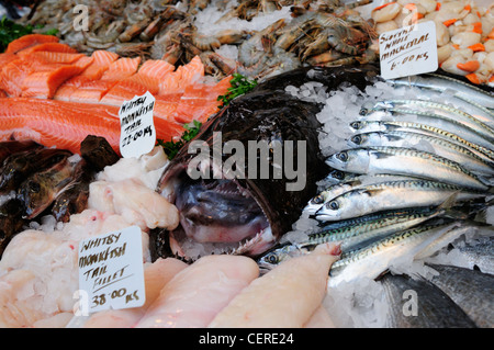 Seafood for sale from a fishmongers stall at Borough market. - Stock Photo