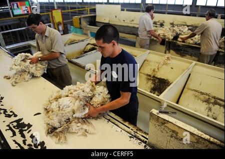 URUGUAY city Trinidad, company Lanas Trinidad S.A. processing and spinning of Merino sheep wool - Stock Photo