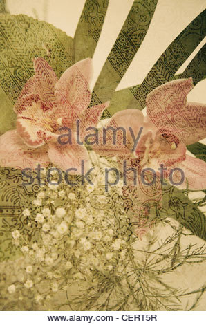 Flower Collage XIII. - Stock Photo