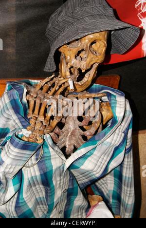 No Smoking (smoking kills) campaign using Original human skeleton - Stock Photo