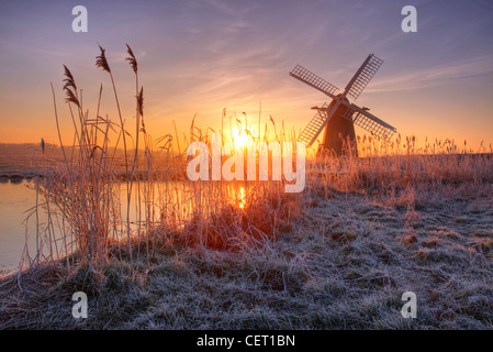 A misty sunrise over hoar frosted reeds and Herringfleet Windmill in Suffolk. - Stock Photo