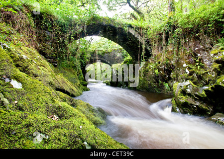 The Roman bridge over the River Machno at Penmachno near Betws-y-Coed in Snowdonia National Park. - Stock Photo