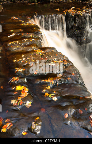The tumbling waters of Mill Gill Force near Askrigg, North Yorkshire - Stock Photo