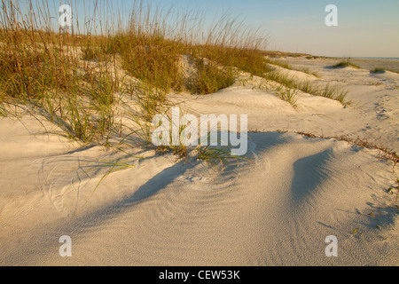 dunes along shore of Atlantic Ocean, Anastasia State Park, St. Augustine, Florida - Stock Photo