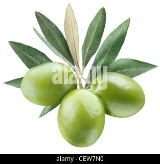Olives with leaves on a white background. - Stock Photo