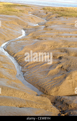 Small stream running through mud flats at low tide - Stock Photo