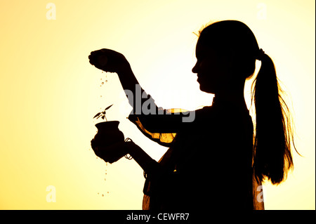 Indian teenage girl sprinkling water over a plant seedling in a clay pot. Silhouette. India - Stock Photo