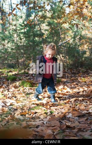 Toddler girl walking in autumn leaves - Stock Photo