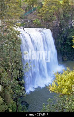 Whangarei Falls, on the Hatea River, North Island, New Zealand. - Stock Photo