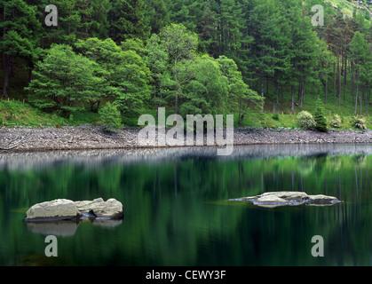 Green trees reflected in Garreg ddu Reservoir in the Elan Valley. - Stock Photo