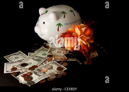Honeymoon savings Piggy Bank with cash on a black background - Stock Photo