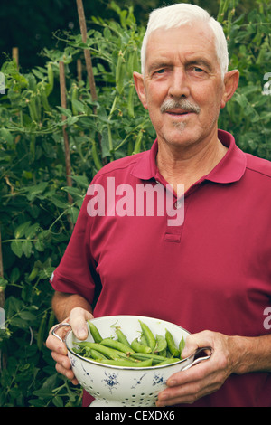 a man holding a bowl of pea pods; naas, county kildare, ireland - Stock Photo