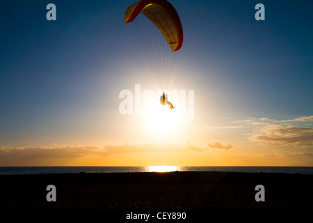 Catching the Sun - Stock Photo