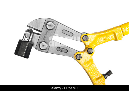 New, yellow bolt cutters with sharp pincers cutting a lock, isolated on white. - Stock Photo
