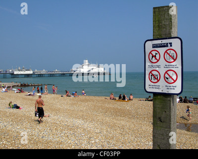 Easbourne beach and pier, East Sussex.  Warning sign - No dogs, No drinking alcohol, no barbeques, do not feed the - Stock Photo