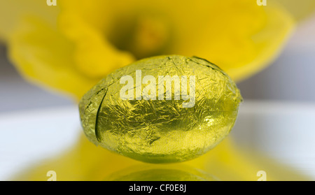Coloured foil wrapped mini Easter eggs framed by a Daffodil - Stock Photo